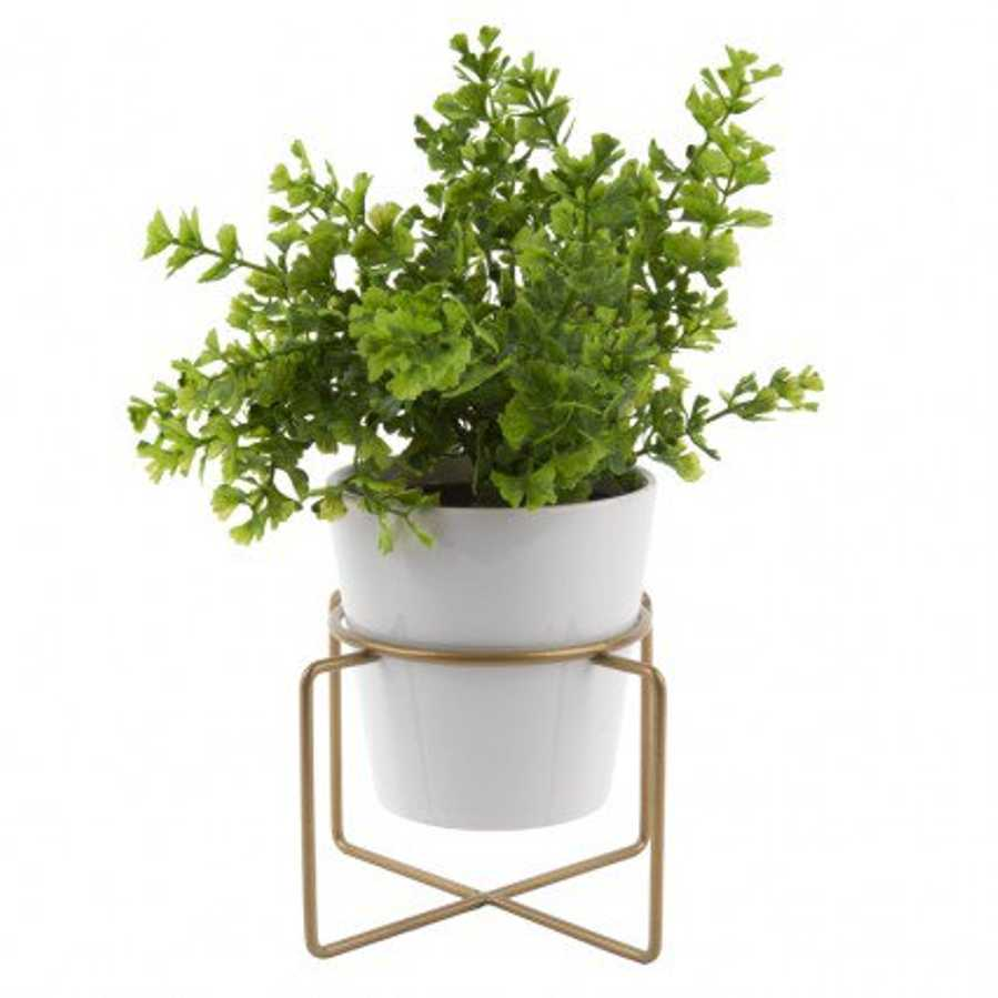 Coy plant pot and stand red candy