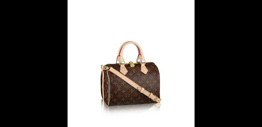 Louis Vuitton Handbags: a Handbook for You to Buy